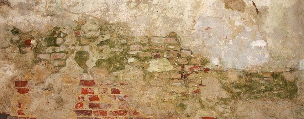 Vochtige muur